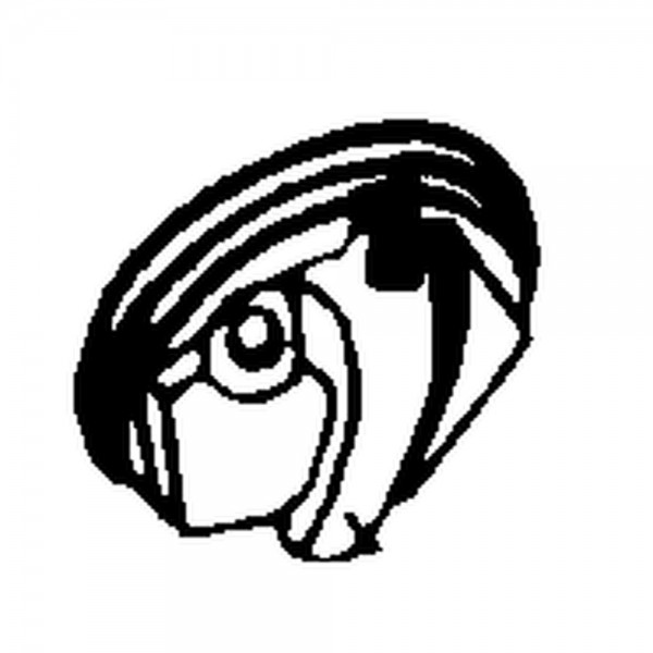 Hakendeckel