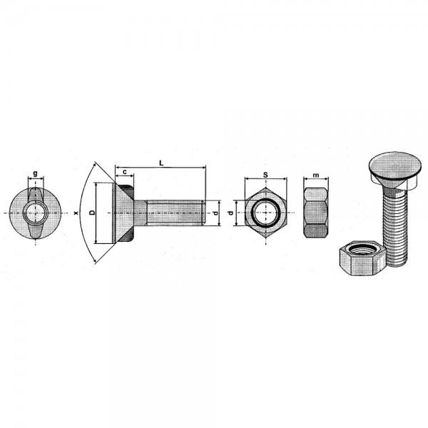 Scharschraube mit 2 Nasen DIN11014