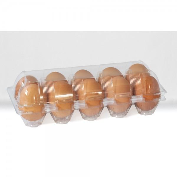 10er Eierschachtel, PET